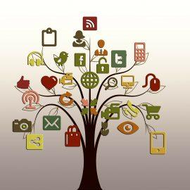 Hoe en hoe vaak deel je je blog op social media?
